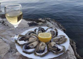 Večer malostonskih kamenica i blatskih vina